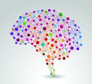 Creatief denken en het brein